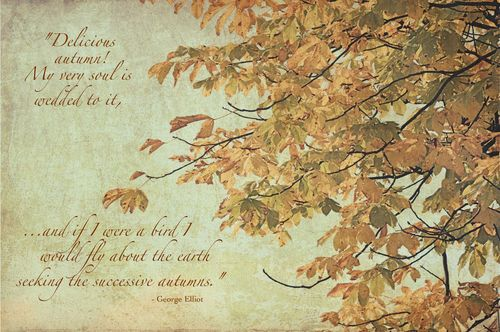 Fall-leaves-text-quote-small-size