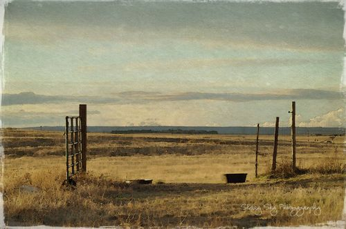 Ranch-gate-watercolor-web