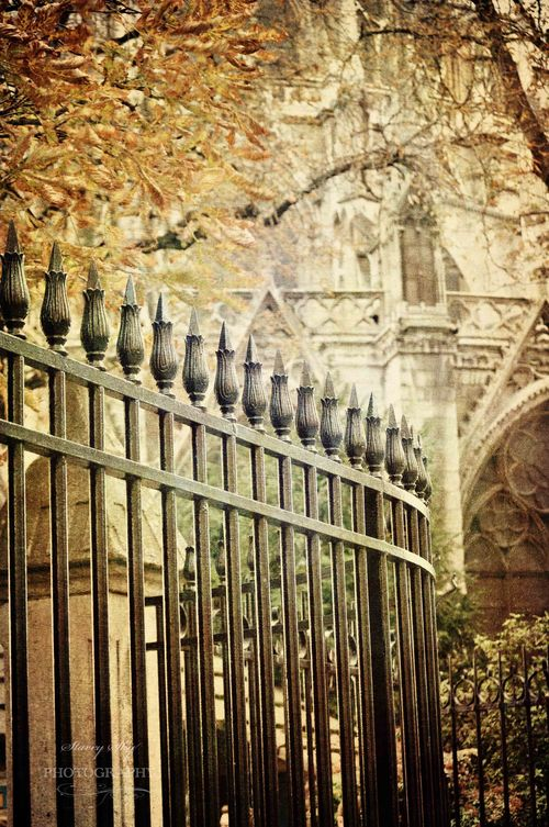 Notre-Dame-fence-NN-Antique-Overlay-copy-3