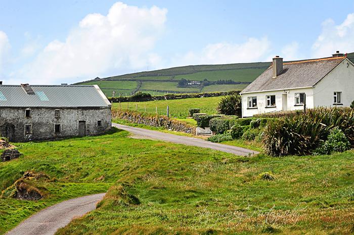 Bay Farm