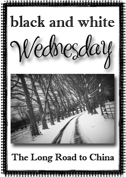 Black and White Wed icon