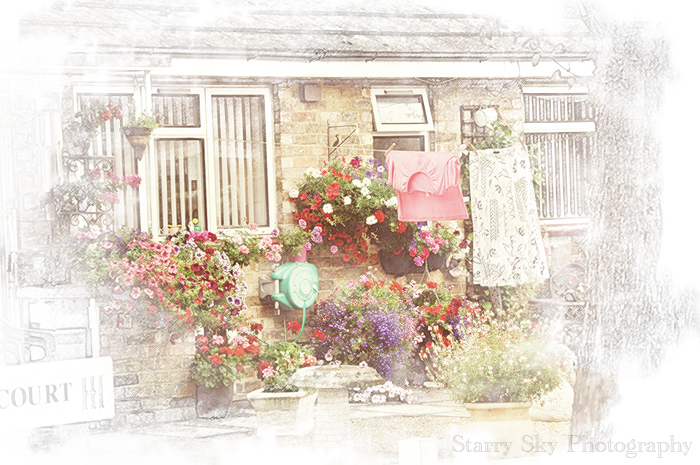 cottage garden sketch