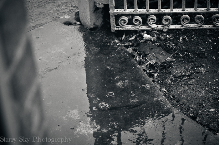 Oct 2012 rain web