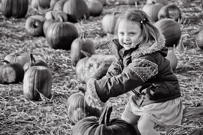 Oct 2012 pumpkin patch 6 web