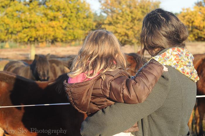 Nov 2012 ponies web-7