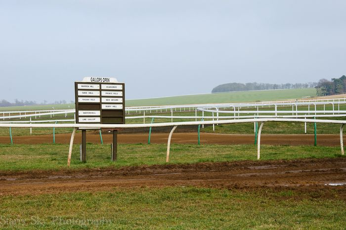 Feb 2013 newmarket racing web_-2