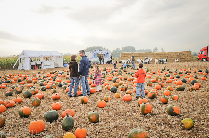 Oct 2012 pumpkin patch 1 web-5