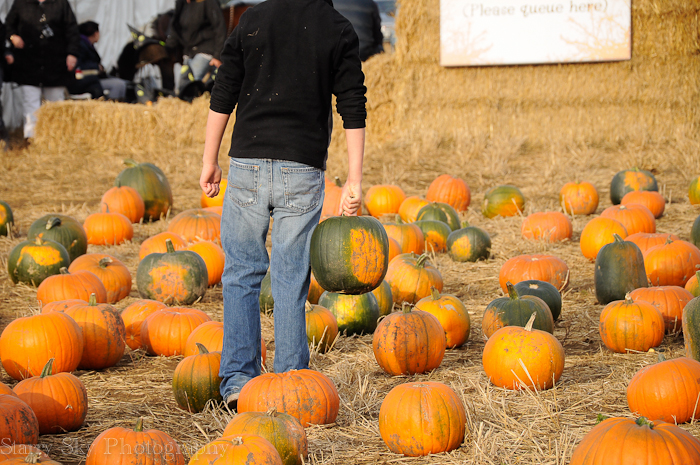 Oct 2012 pumpkin patch 7 web
