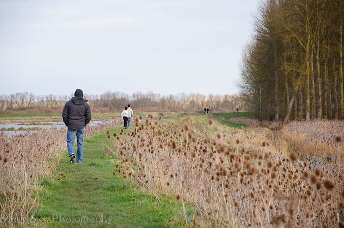 Dec 2012 fen 2 web-2