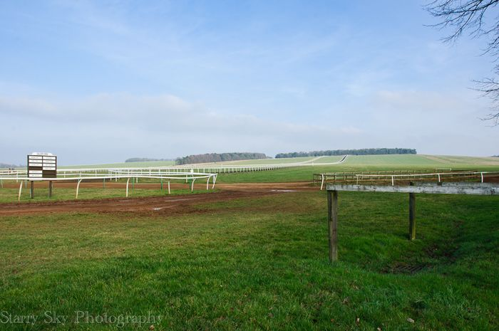 Feb 2013 newmarket racing web_-3