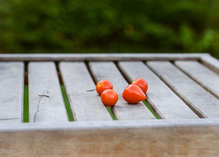 tomatoes web-2