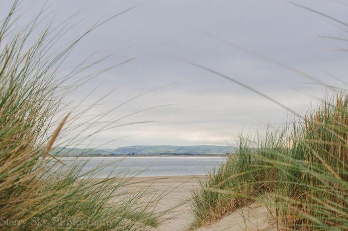 beach web-3