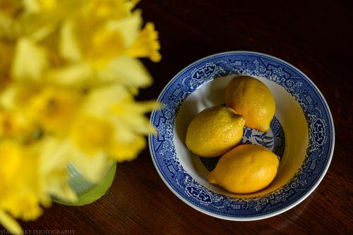 Jan 2014 lemons web