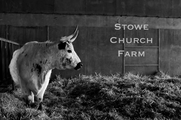stowe farm web-26