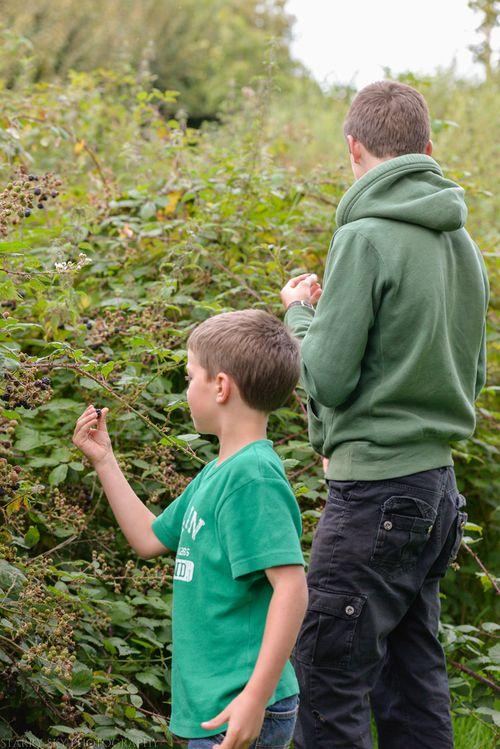 Sept 2014 berries web-7