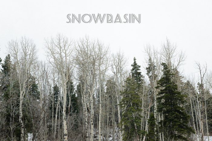 Mar 2015 snowbasin 3 web