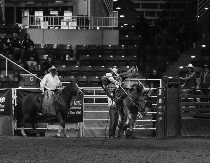 Mar 2015 rodeo web (8 of 18)