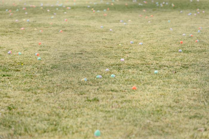 Apr 2015 egg hunt web (1 of 1)-3