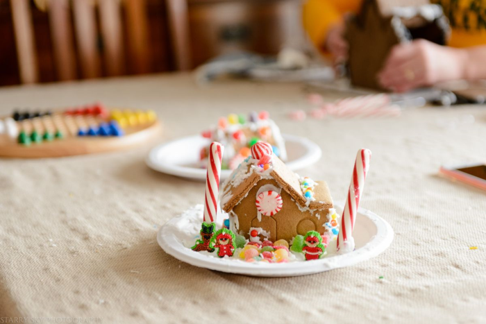Dec 2015 gingerbread web (10 of 10)