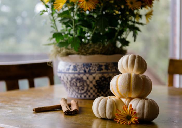 pumpkins web (1 of 1)