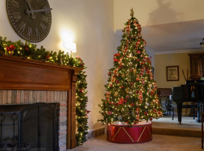 Dec 2017 tree  web (1 of 1)