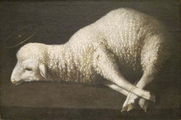 Agnus_Dei_(The_Lamb_of_God)_by_Zurbarán _San_Diego_Museum_of_Art