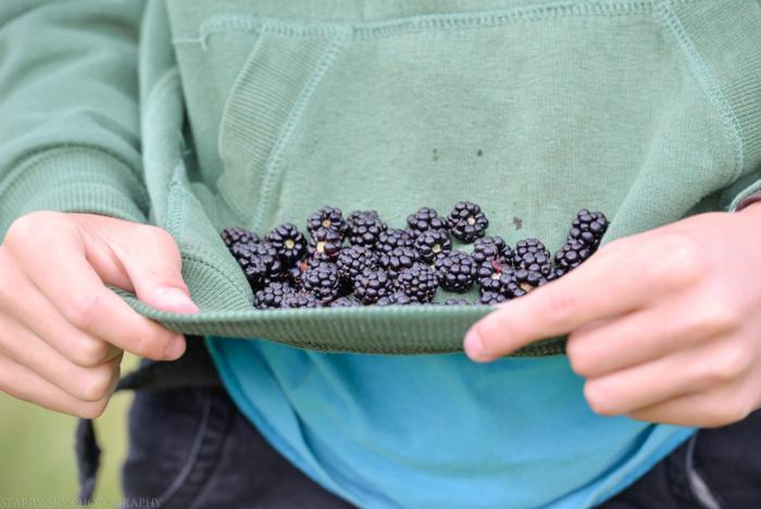 Sept 2014 berries web-9