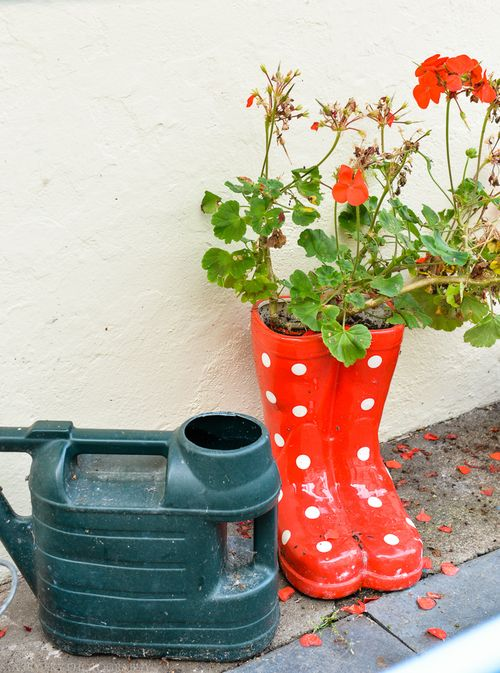 Sept 2014 wellies web