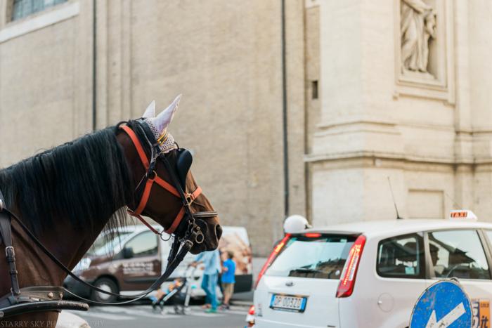 Oct 2014 rome streets web-6