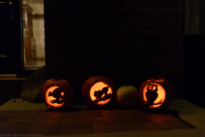 Oct 2016 pumpkins web  (7 of 7)