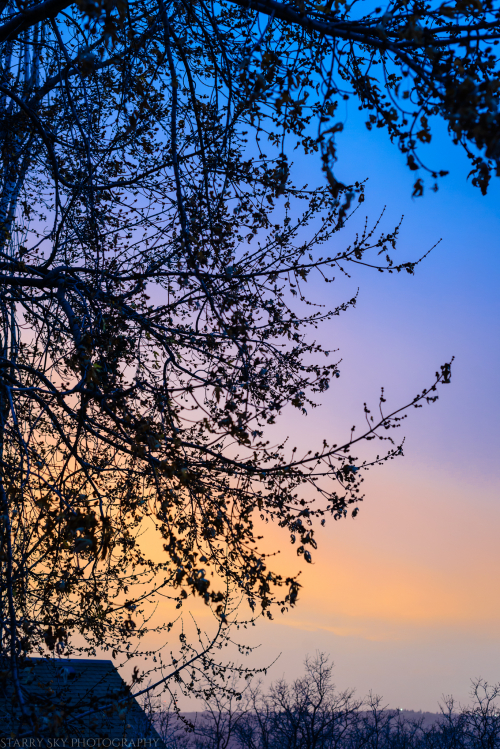 Nov 2017 sunrise web (1 of 1)