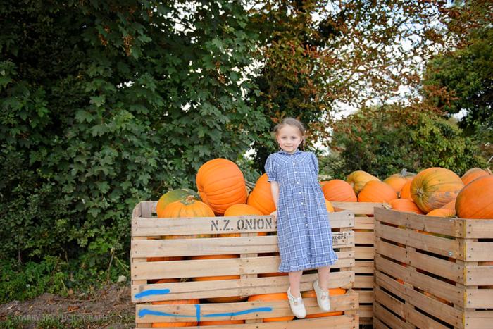 pumpkin 6 web