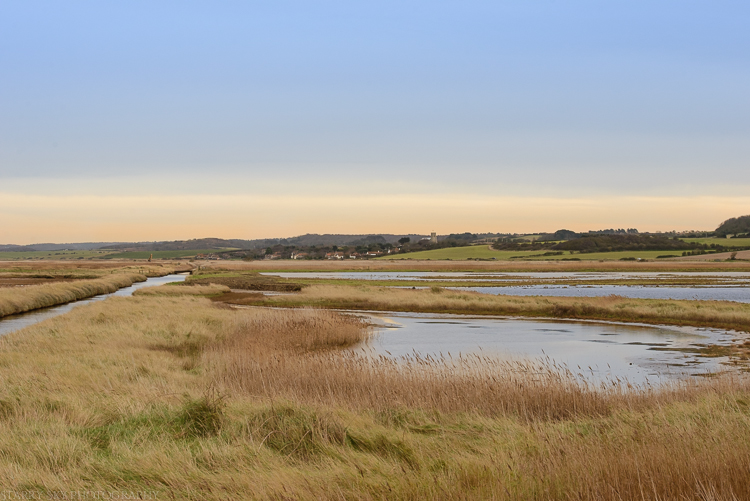 Jan 2015 cley marsh 2web (2 of 2)