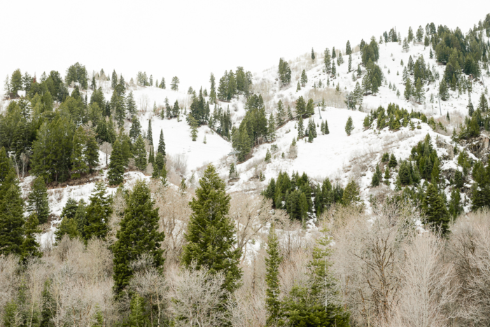 Mar 2015 snowbasin web (2 of 3)