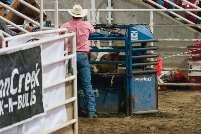 Mar 2015 rodeo web (12 of 18)