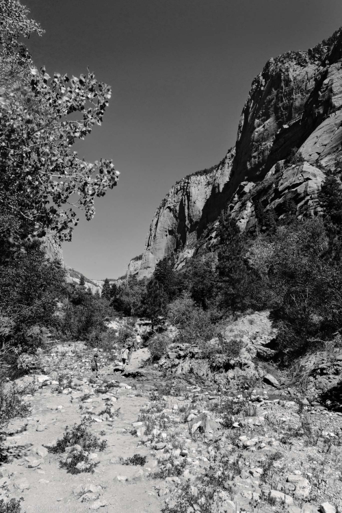 Jun 3017  zion floor hike web (8 of 8)