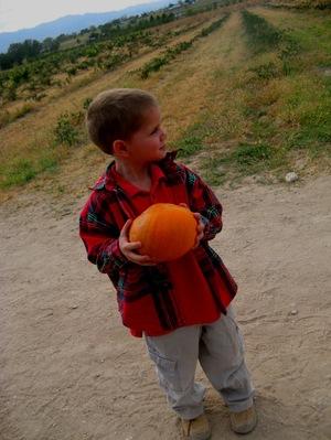 K_pumpkin