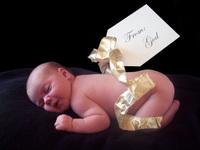 Tess_gift_tag